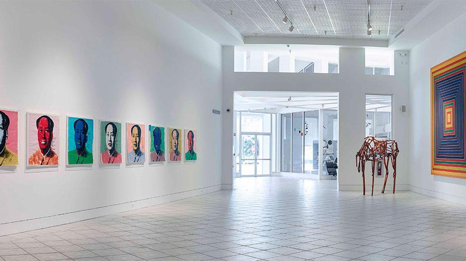 best-art-museums-miami-lowe
